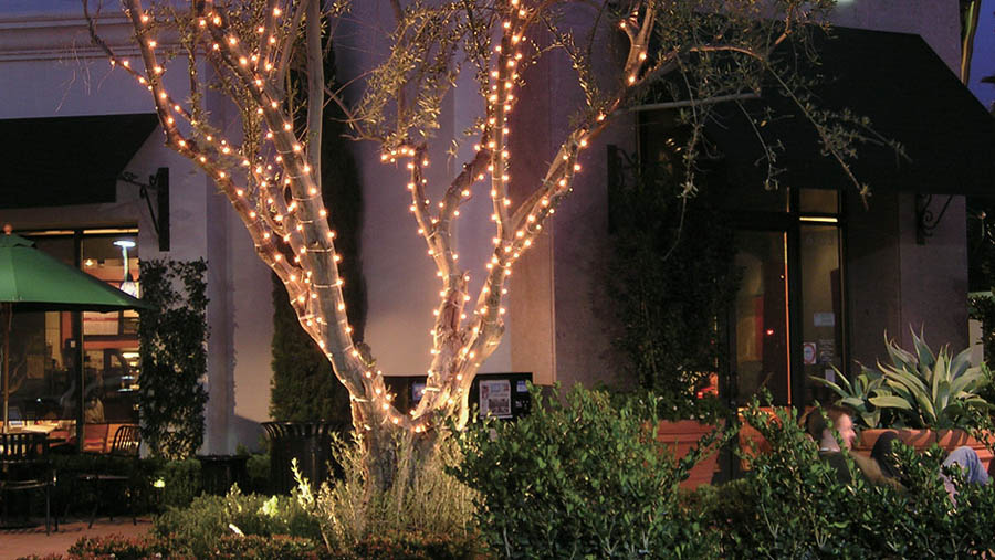 Completely New Round Tree Lights Designs Hm29